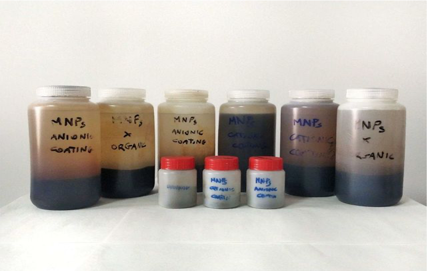 First batches of the Magnetic Nanoparticles