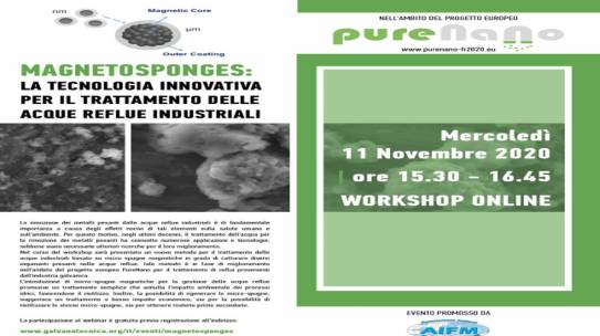 PURENANO PRESENTED AT  THE ONLINE MAGNETOSPONGES WORKSHOP, 11 NOVEMBER 2020