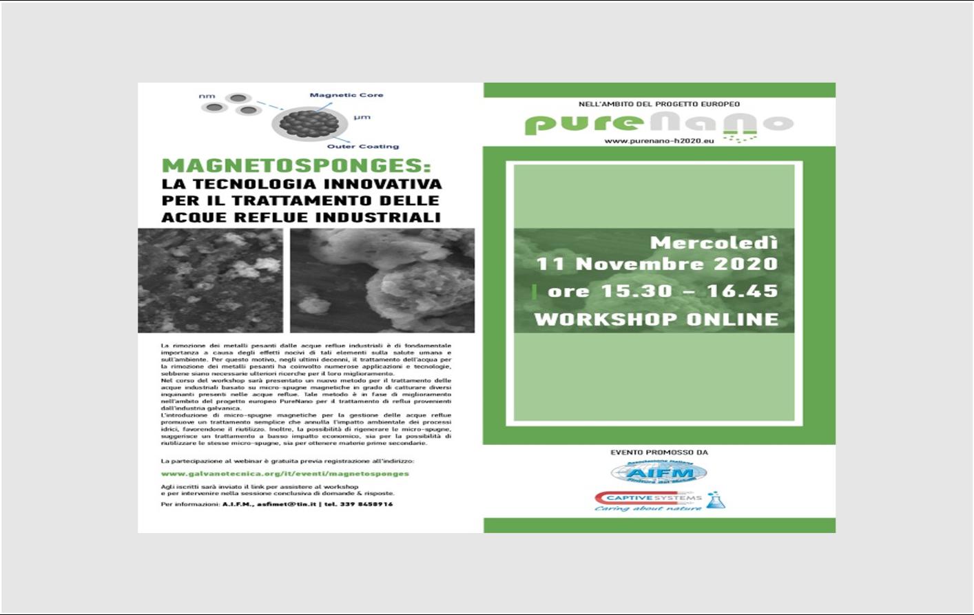 PureNano presented at  the online Magnetosponges Workshop, 11 November 2020
